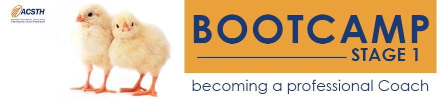 bootcamp-coaching-fedro