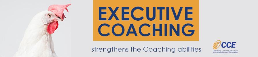 executive-coaching-fedro