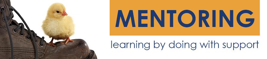 mentoring-coaching-fedro