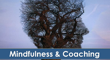 Mindfulness e Coaching