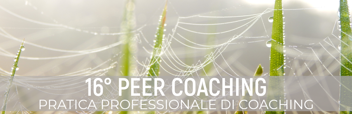 Peer coaching 16 scuola Fedro